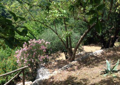 terrazza_rivello_basilicata_5